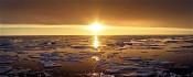 O podnebnih spremembah na dan meteorologije